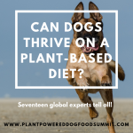 Can dogs thrive on a vegan diet