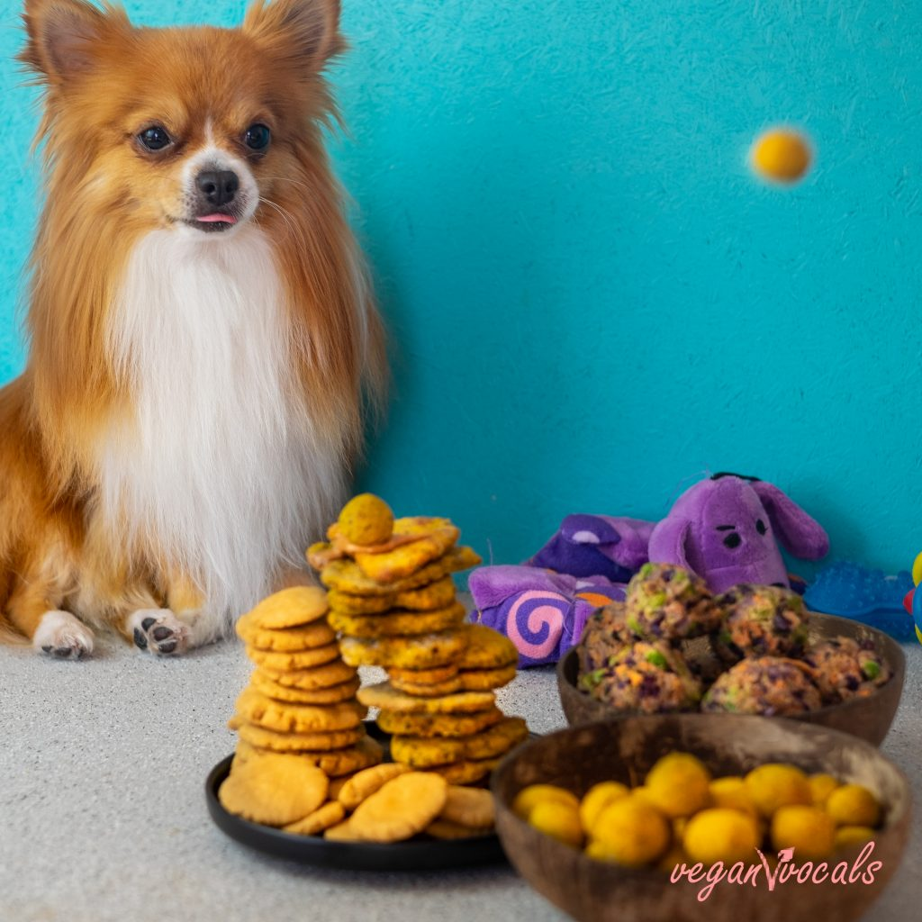 3 vegan dog treats recipes from our cookbook ALL PLANTS (2)