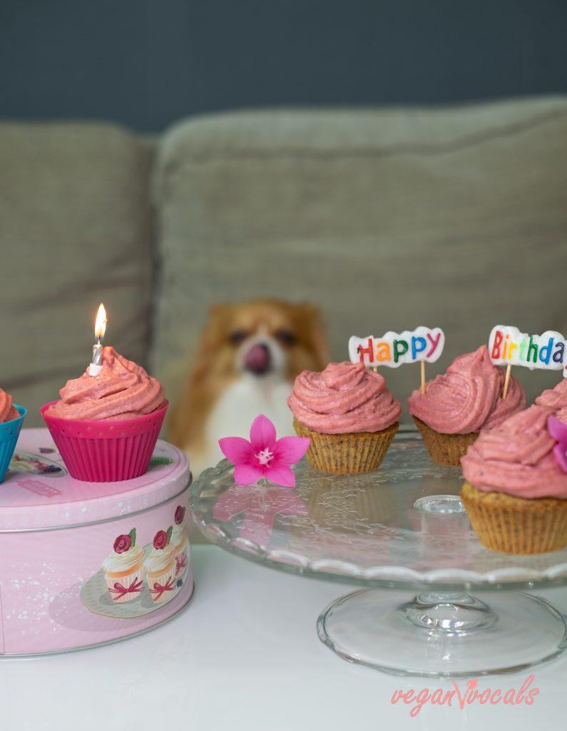 Easy Healthy Vegan Pupcakes (Dog-Friendly Vegan Cupcakes)