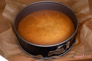 Vegan & Gluten-Free Salted Caramel Popcorn Cake